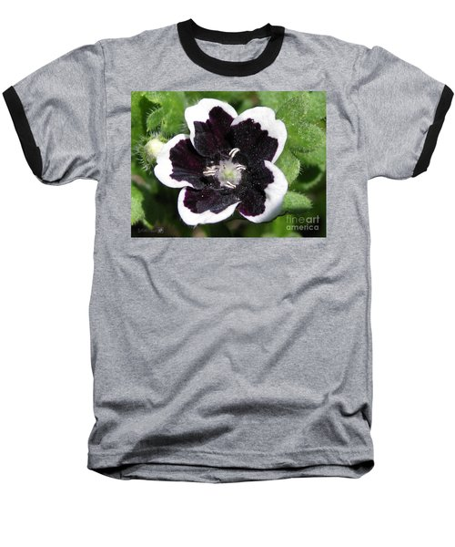 Baseball T-Shirt featuring the photograph Nemophilia Named Penny Black by J McCombie