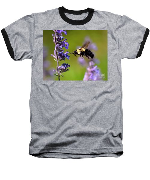 Non Stop Flight To Pollination Baseball T-Shirt