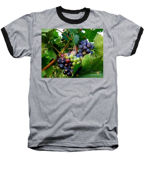 Baseball T-Shirt featuring the photograph Not Yet by Lainie Wrightson