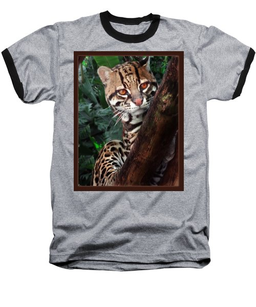 Ocelot Lookout Baseball T-Shirt