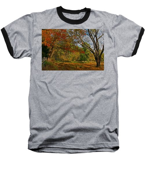 Old Tree And Foliage Baseball T-Shirt