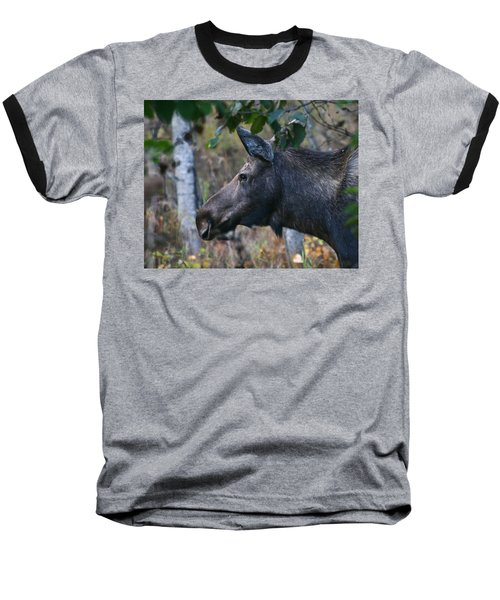 Baseball T-Shirt featuring the photograph On Alert by Doug Lloyd
