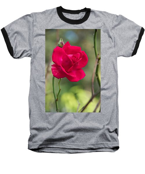 Baseball T-Shirt featuring the photograph One Rose by Joseph Yarbrough