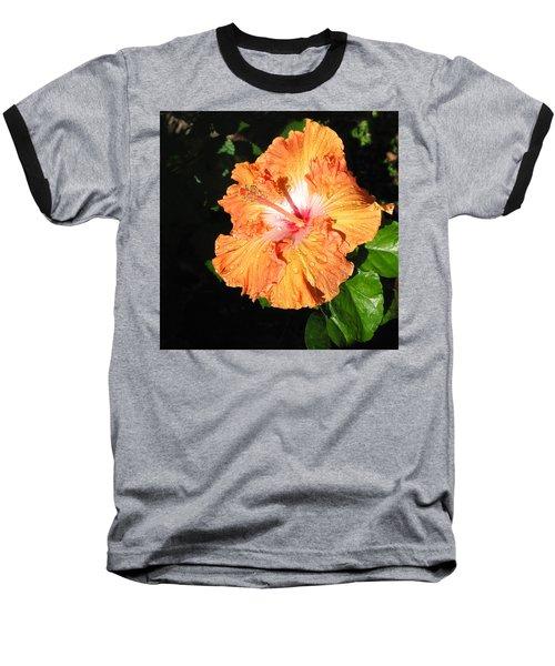 Orange Hibiscus After The Rain 1 Baseball T-Shirt by Connie Fox