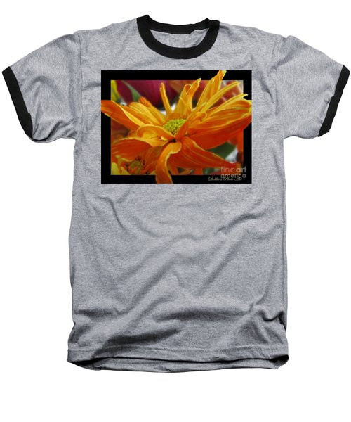 Baseball T-Shirt featuring the photograph Orange Juice Daisy by Debbie Portwood