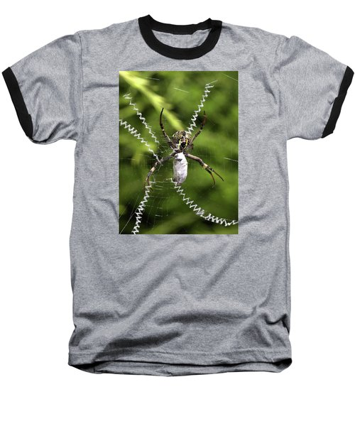 Baseball T-Shirt featuring the photograph Orb Weaver by Joy Watson