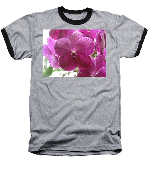 Orchid Cluster Baseball T-Shirt