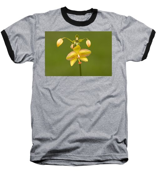 Orchid Number 1 Baseball T-Shirt
