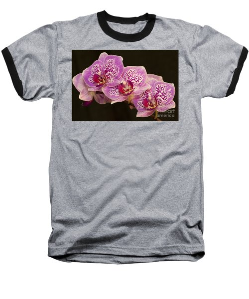Baseball T-Shirt featuring the photograph Orchids by Eunice Gibb