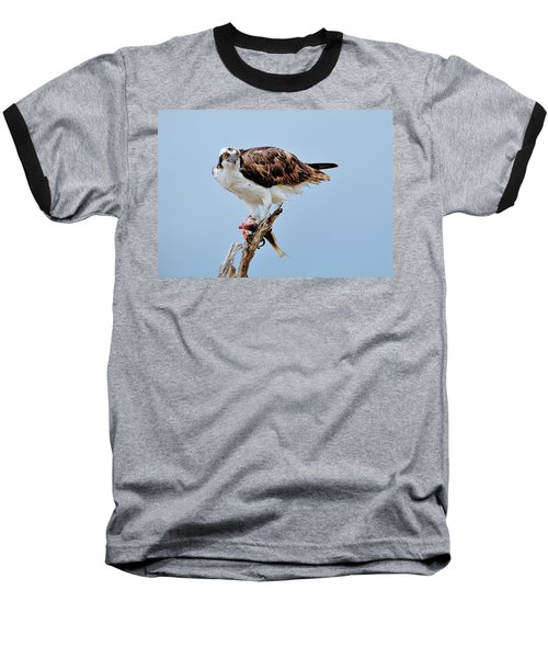 Osprey In The Morning Baseball T-Shirt