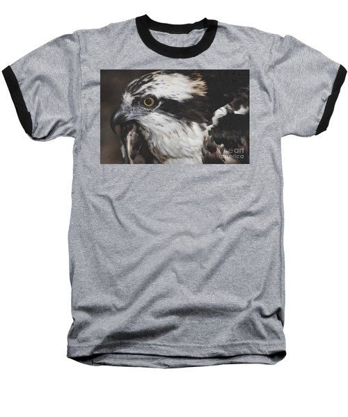 Baseball T-Shirt featuring the photograph Osprey by Lydia Holly