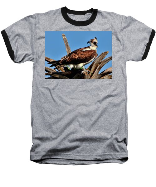 Osprey On A Windy Morning Baseball T-Shirt