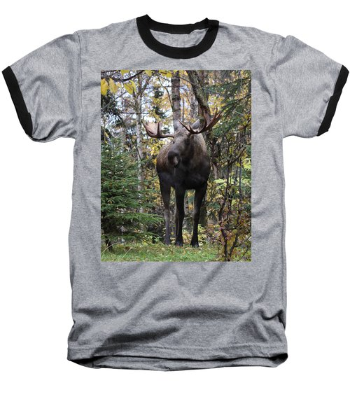 Out In The Open Baseball T-Shirt