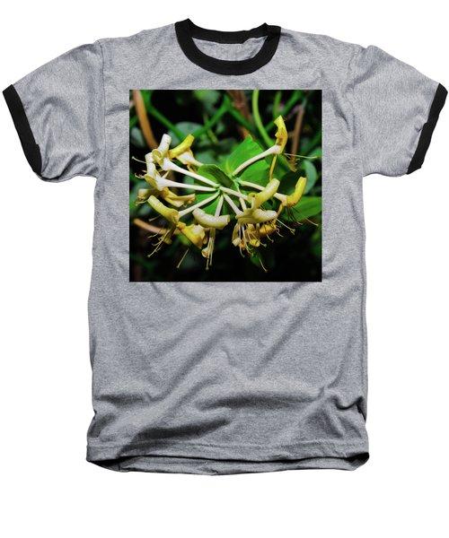 Overblown Perfoliate Baseball T-Shirt