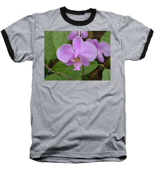 Pale Pink Orchid Baseball T-Shirt