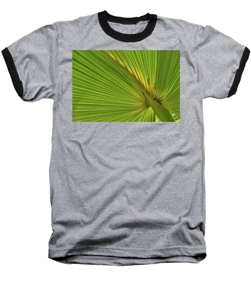 Baseball T-Shirt featuring the photograph Palm Leaf II by JD Grimes