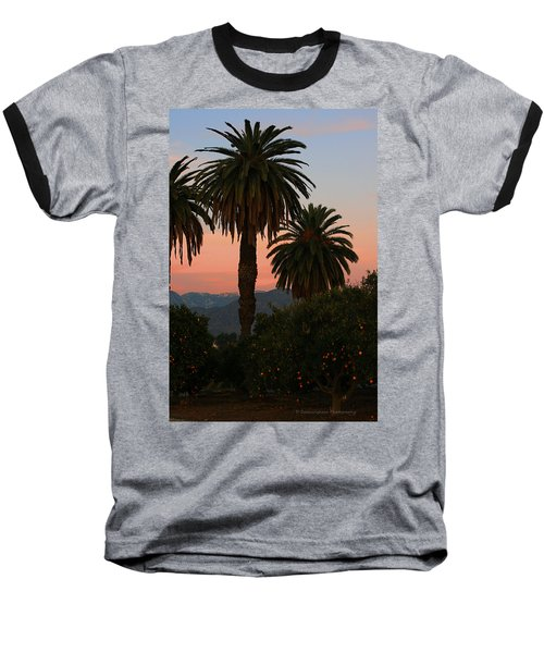 Palm Trees And Orange Trees Baseball T-Shirt by Dorothy Cunningham