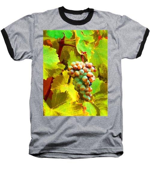 Paschke Grapes Baseball T-Shirt