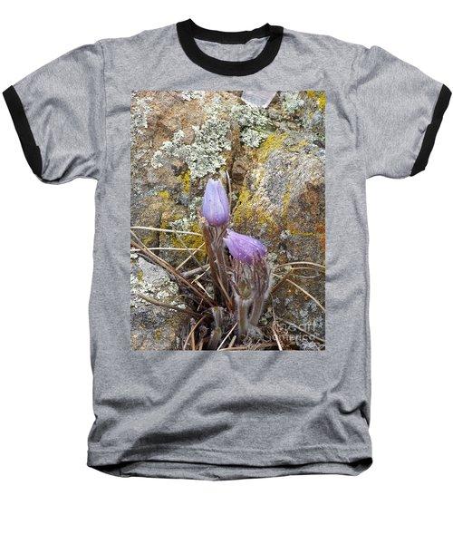 Pasque Flowers Baseball T-Shirt