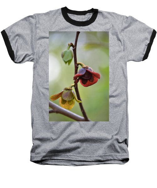 Paw-paw Flowers Baseball T-Shirt