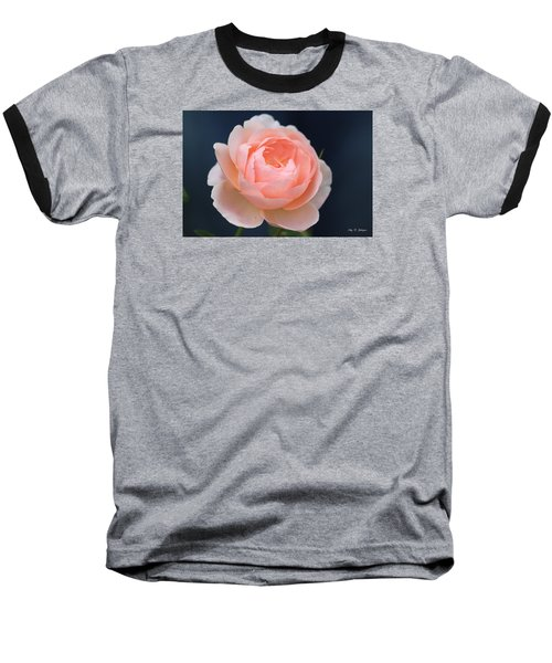 Peaches And Cream  Baseball T-Shirt by Amy Gallagher