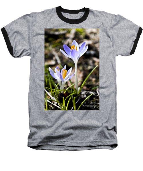 Peaking Spring Baseball T-Shirt
