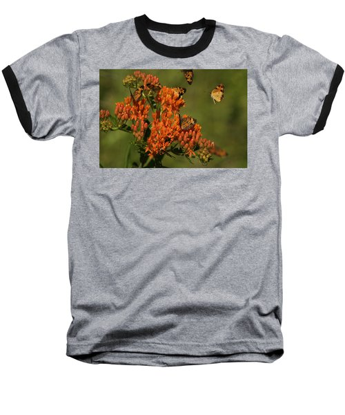 Baseball T-Shirt featuring the photograph Pearly Crescentpot Butterflies Landing On Butterfly Milkweed by Daniel Reed