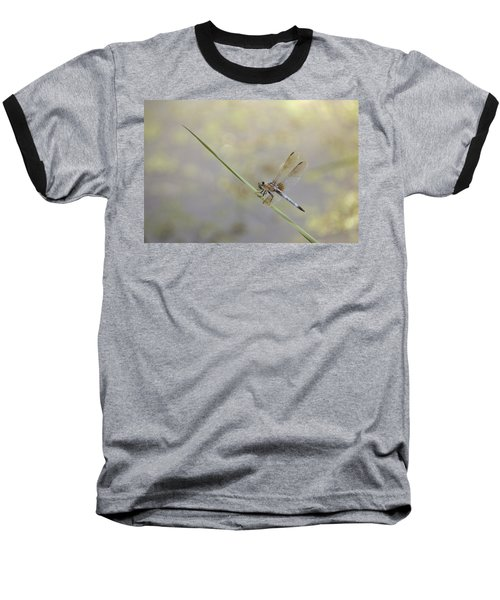 Baseball T-Shirt featuring the photograph Perched Dragon In Sepia by JD Grimes