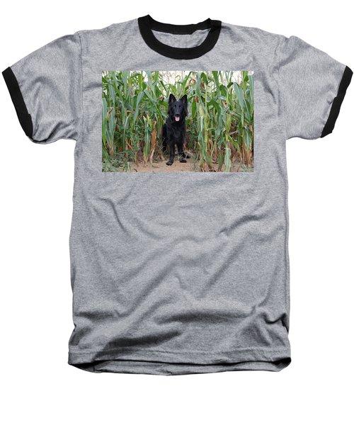 Phoenix In The Cornfield Baseball T-Shirt