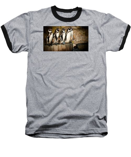 Pick Up A Penguin Baseball T-Shirt by Chris Boulton