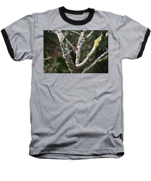 Pileated Woodpecker In Cherry Tree Baseball T-Shirt by Kym Backland