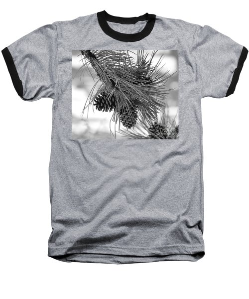 Pine Cones Baseball T-Shirt