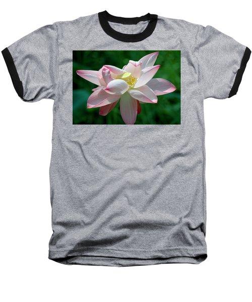 Pink Attraction Baseball T-Shirt by LeeAnn McLaneGoetz McLaneGoetzStudioLLCcom