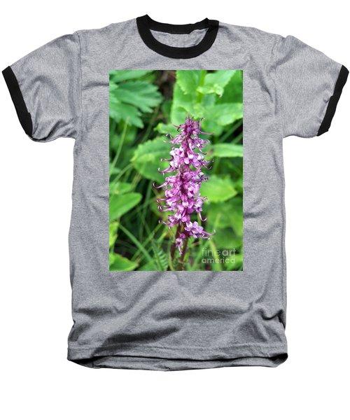 Pink Elephants Baseball T-Shirt