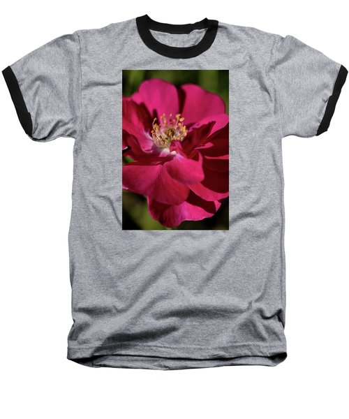 Baseball T-Shirt featuring the photograph Pink Of Rose by Joy Watson