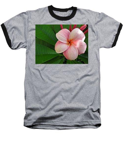 Pink Plumeria Baseball T-Shirt