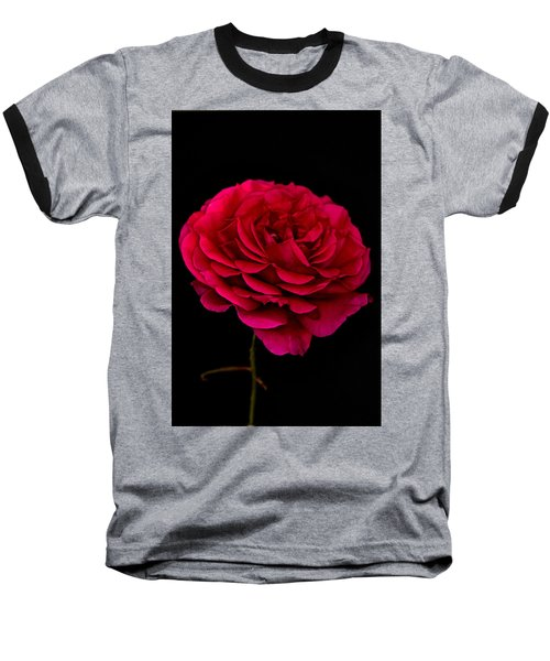 Baseball T-Shirt featuring the photograph Pink Rose by Steve Purnell