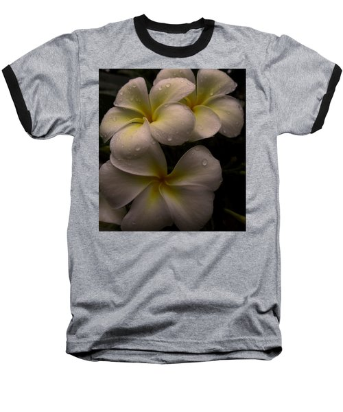 Plumeria Baseball T-Shirt by Dorothy Cunningham
