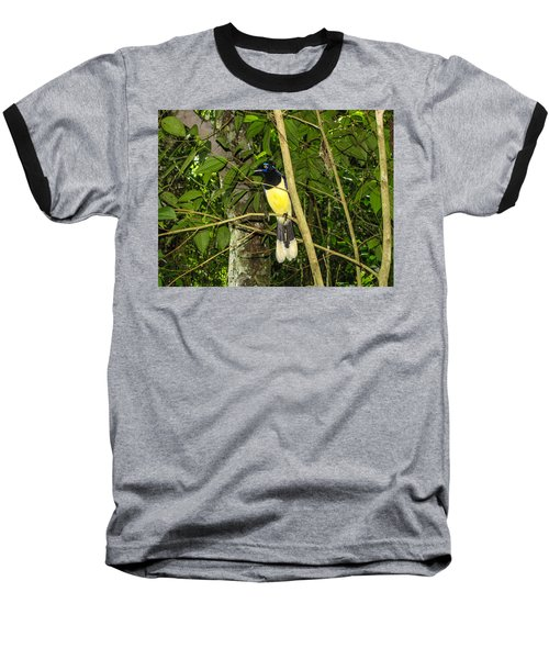 Baseball T-Shirt featuring the photograph Plush-crested Jay by David Gleeson