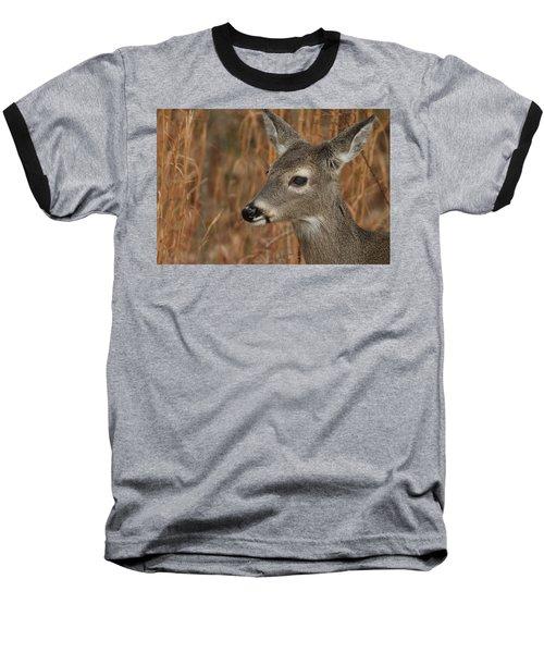 Portrait Of  Browsing Deer Baseball T-Shirt
