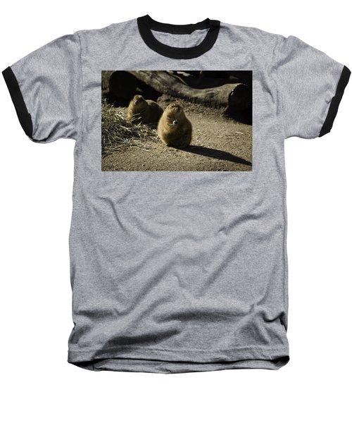 Prairie Dog Sees The Shadow Baseball T-Shirt