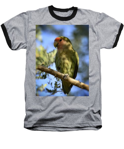 Pretty Bird Baseball T-Shirt by Saija  Lehtonen