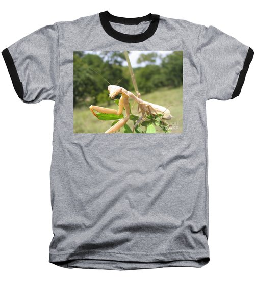 Preying Mantis Baseball T-Shirt