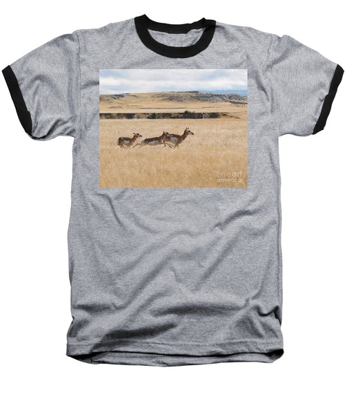 Baseball T-Shirt featuring the photograph Pronghorn Antelopes On The Run by Art Whitton