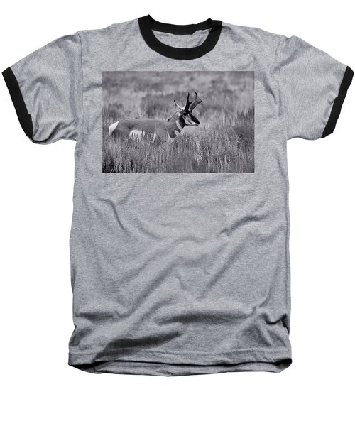Baseball T-Shirt featuring the photograph Pronghorn  by Eric Tressler