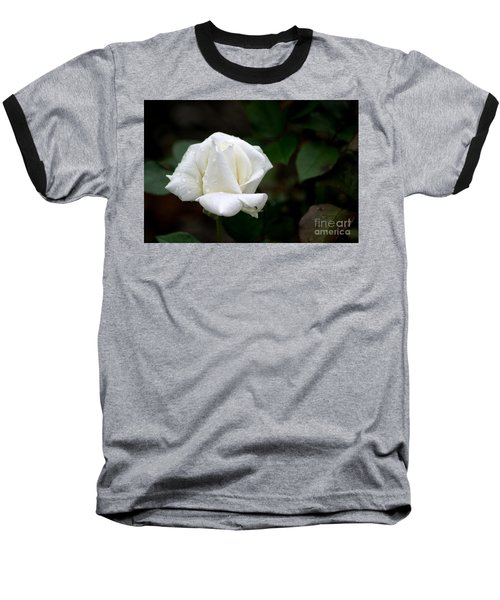 Pure As Snow Baseball T-Shirt by Living Color Photography Lorraine Lynch