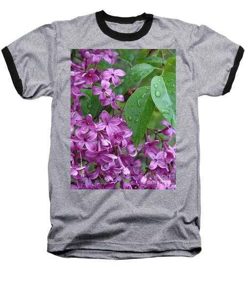Purple Lilac Baseball T-Shirt by Laurel Best