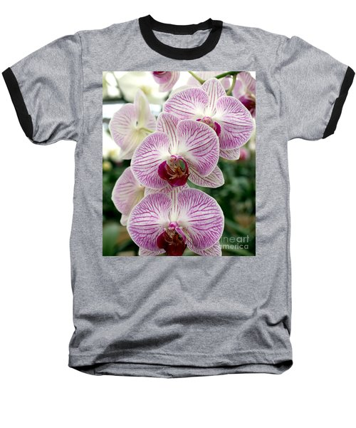 Baseball T-Shirt featuring the photograph Purple Orchids by Debbie Hart