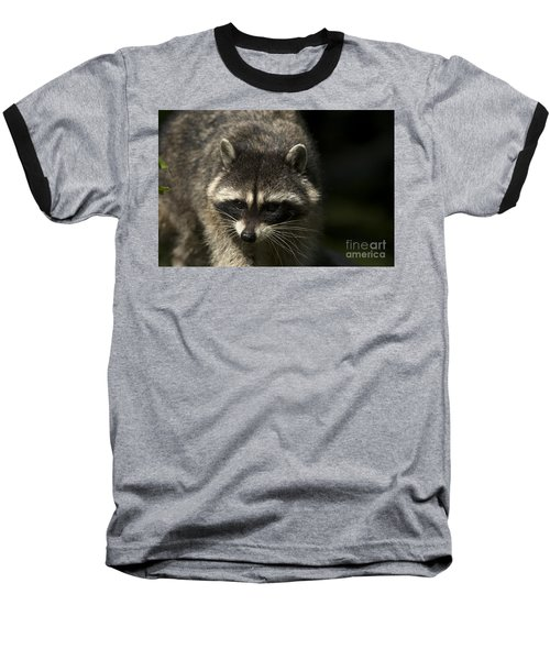 Raccoon 2 Baseball T-Shirt