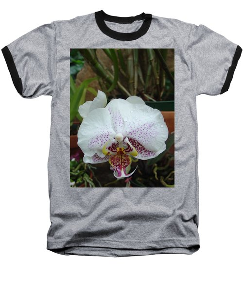 Rain Drops On Orchid Baseball T-Shirt
